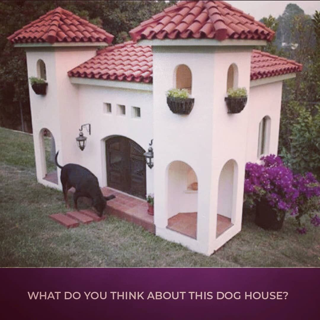 This Dog Castle Is Giving Me Life Right Now How Fabulous Is This Luxury Dog House Realestate Realtorlife Njmon Luxury Dog House Dog House Luxury Dog