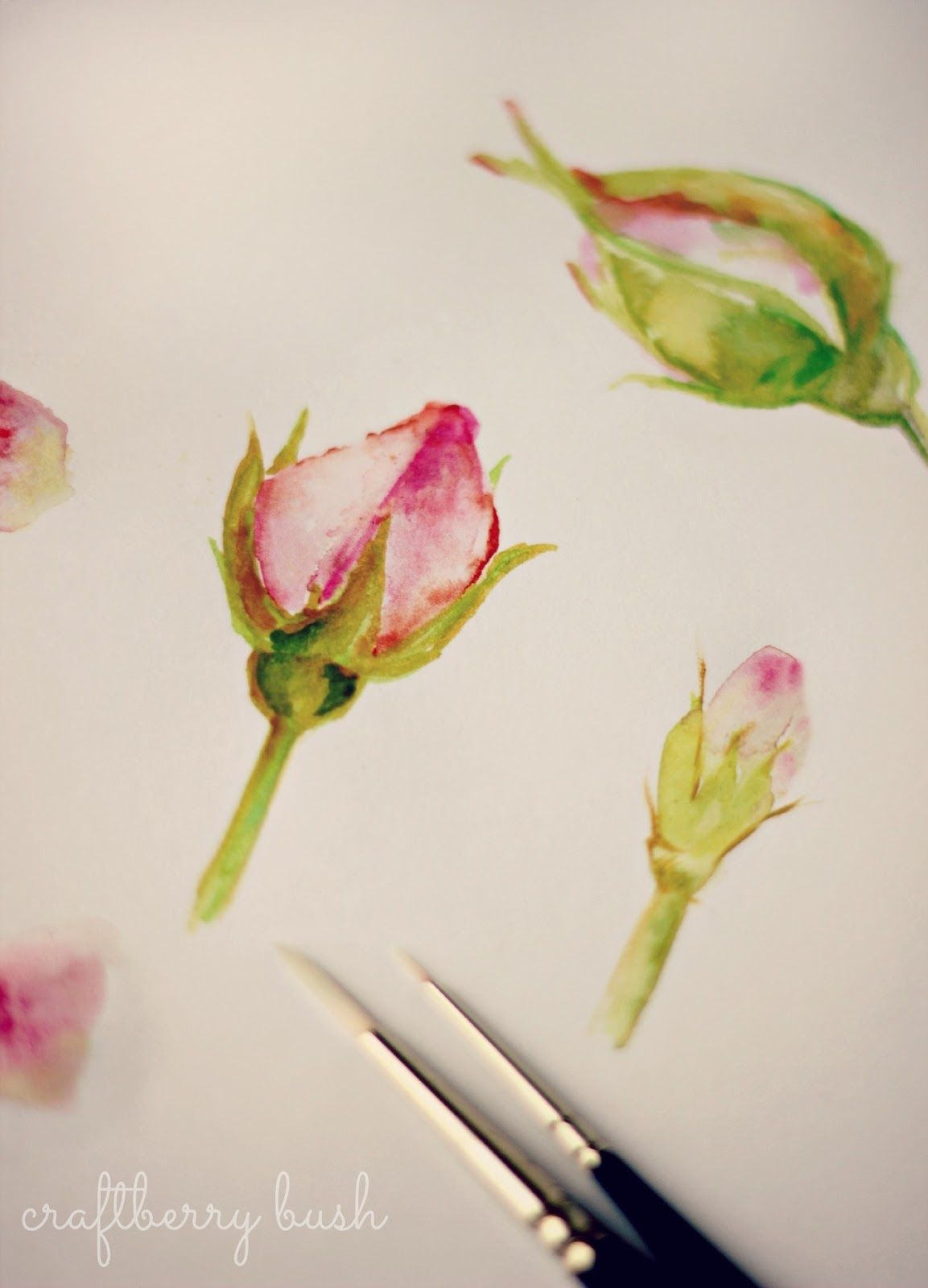 A Peek Into My Sketchbook Watercolor Paintings Rose Painting