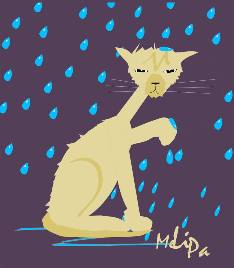 MeinLilaPark: rainy day cat illustration