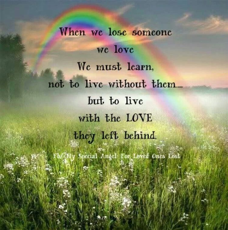 Pin by Susie White on Rainbow Bridge Grief quotes, Miss