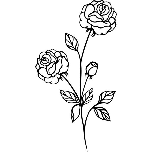 Vintage Flowers Rose 3 Liked On Polyvore Featuring Backgrounds Flowers Detail Embellishment And Filler Flower Drawing Vintage Flowers Cartoon Flowers