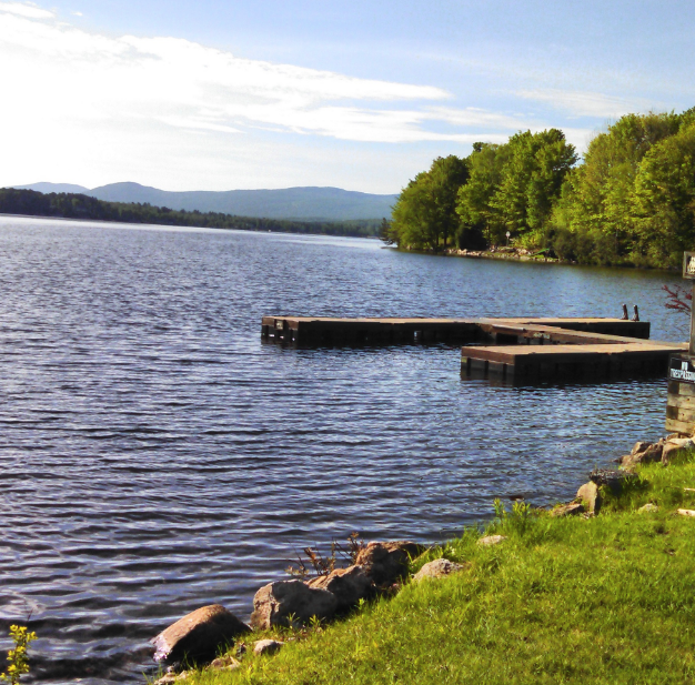 The Importance Of Lakes And Ponds Restoration In 2020 Lake Pond Hydroelectric Power