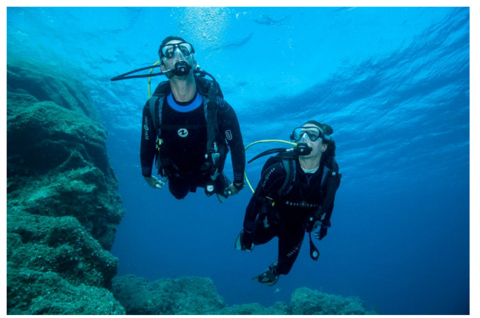 Things that will take your Scuba Diving Experience to the
