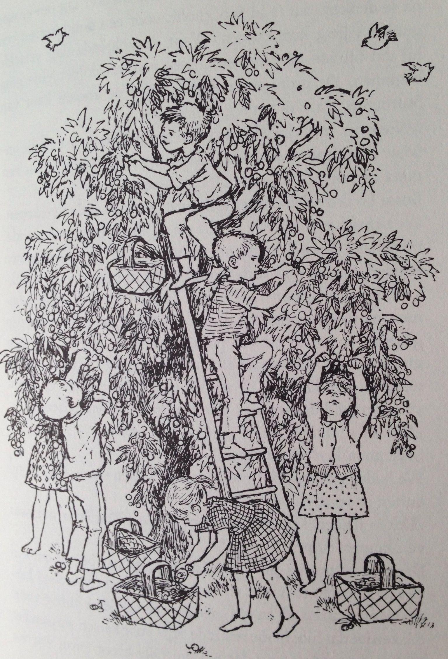 Illustratie Ilon Wikland Uit De Kinderen Van Bolderburen Ink Illustrations Illustration Art Black And White Drawing