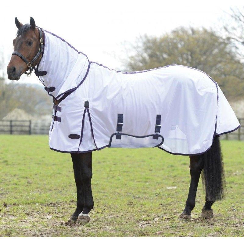 Nerina Van Niekerk On Horse Patterns