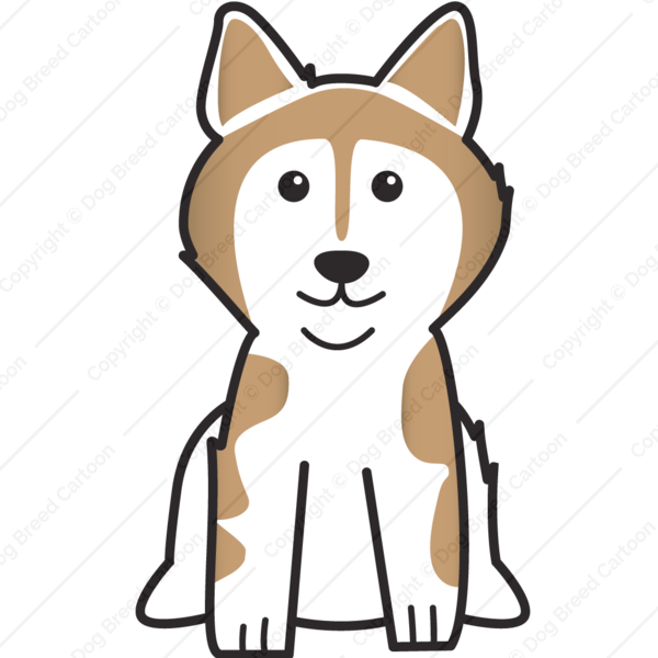 Alaskan Malamute Brown Edition Dog Breed Cartoon