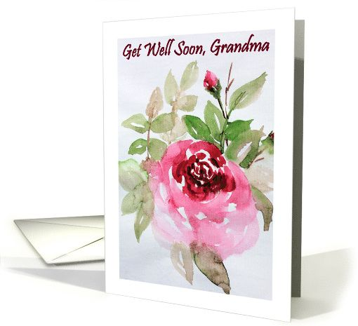 Getwellsoon Grandma Pink Rose Grandmother Watercolor Fineart