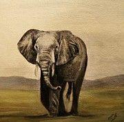 Elephant Print by Elizabeth Barrett