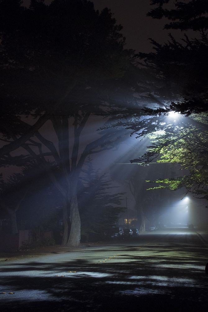 Pin By Alanna Kalie On Print This Landscape Night Photography Photo