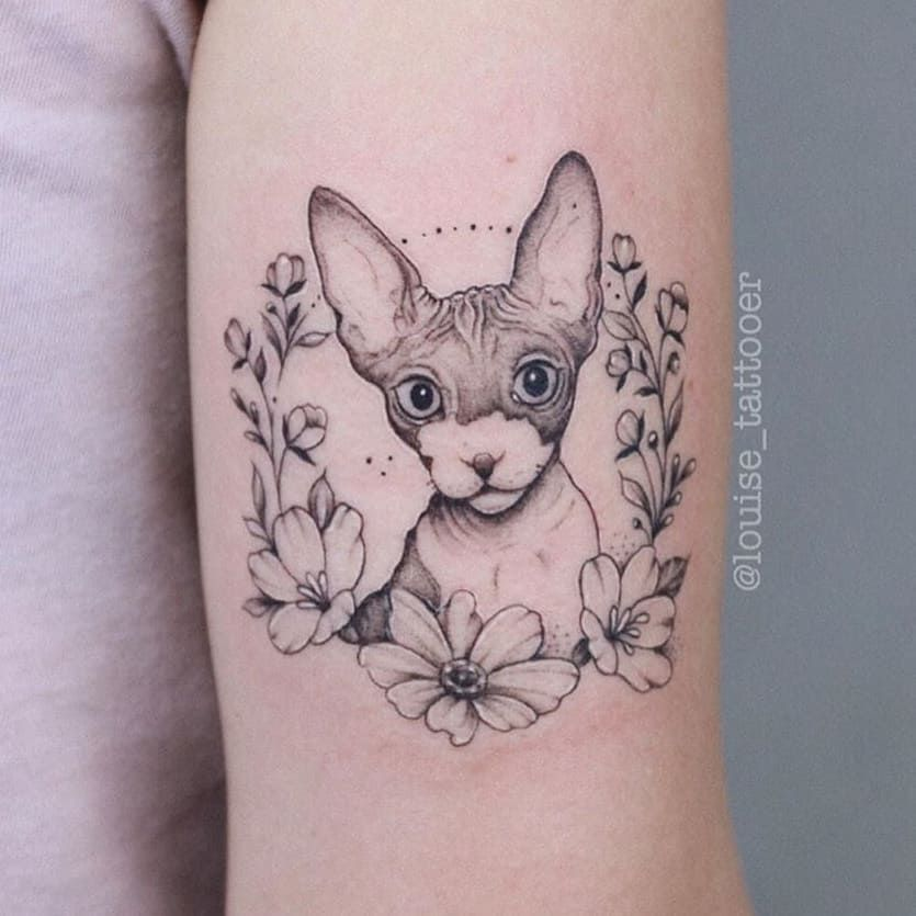 Gatinho mais lindo feito pela @louise_tattooer . . . #tattoo #tatuagem #tattoos #ink #me #inked #tattooart #art #tattooed #tattooartist #o #tatuaje #tatuagemfeminina #tattooink #tattoolife #blackwork #tattooist #arte #tattoobrasil #tatuagens #tattoostyle #brasil #tatuagembrasil #tattooer #tattooing #tattoodo #tatuagemdelicada #sp #finelinetattoo #bhfyp