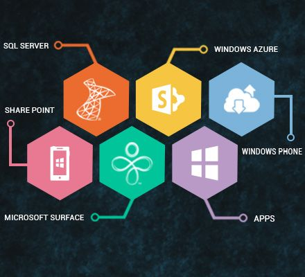 Microsoft Website Design and Application Development by