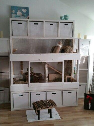 kaninchen haus muffin pinterest kaninchen kaninchenstall und meerschweinchen. Black Bedroom Furniture Sets. Home Design Ideas