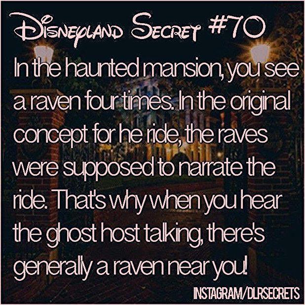 "Photo of alyssa✌🏽️ on Instagram: ""✨ too magical ✨ #Disneyland #dlrsecrets • follow me on @disneysounds 👂"""