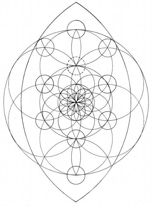 sacred geometry  tree of life  yoni