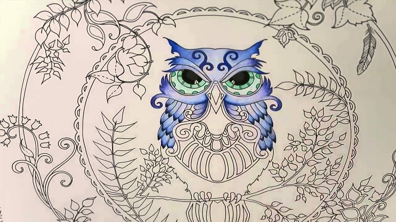 Enchanted Forest Coloring Book Owl Part 1 Enchanted Forest Coloring Book Forest Coloring Book Enchanted Forest Coloring