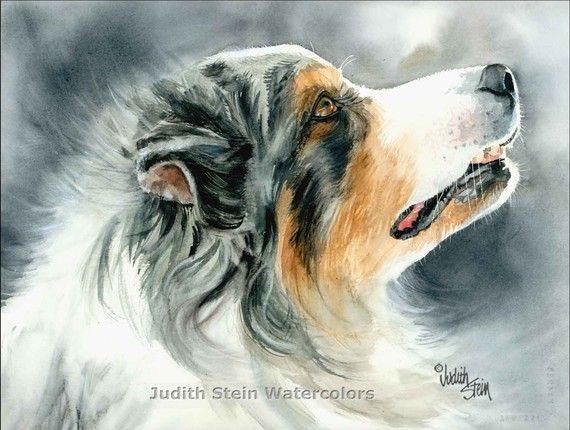 AUSTRALIAN SHEPHERD Dog Judith Stein | Puppy Love | Pinterest ...