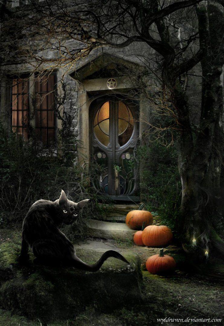 Have a great halloween stock cat ellyviantartartblac