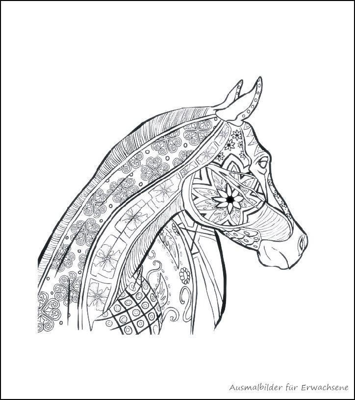 ausmalbilder fur erwachsene pferde zum ausdrucken