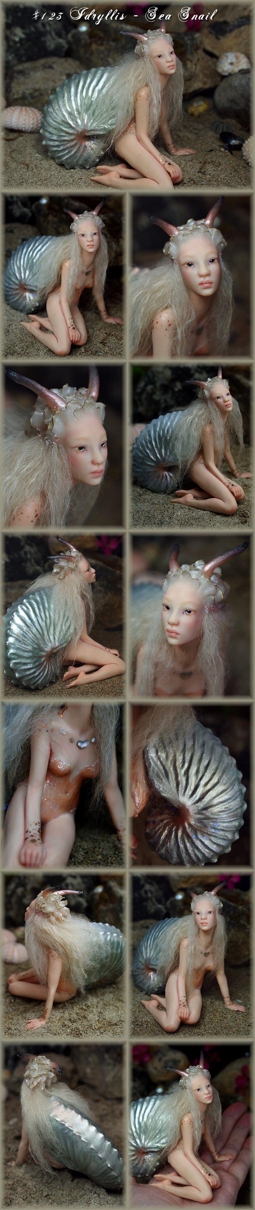 Nenúfar Blanco ~ #123 Idryllis - Sea Snail