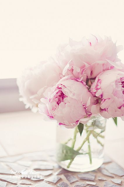 Pink peonies pinterest peony flowers and flower to wake up every morning with soft pink peonies next to my bed rfdreamboard mightylinksfo