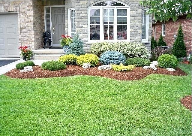 information front yard landscaping