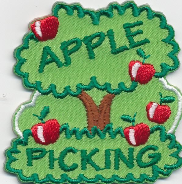 Ebay patches 1 each (2 S/H) Cool patches, Apple