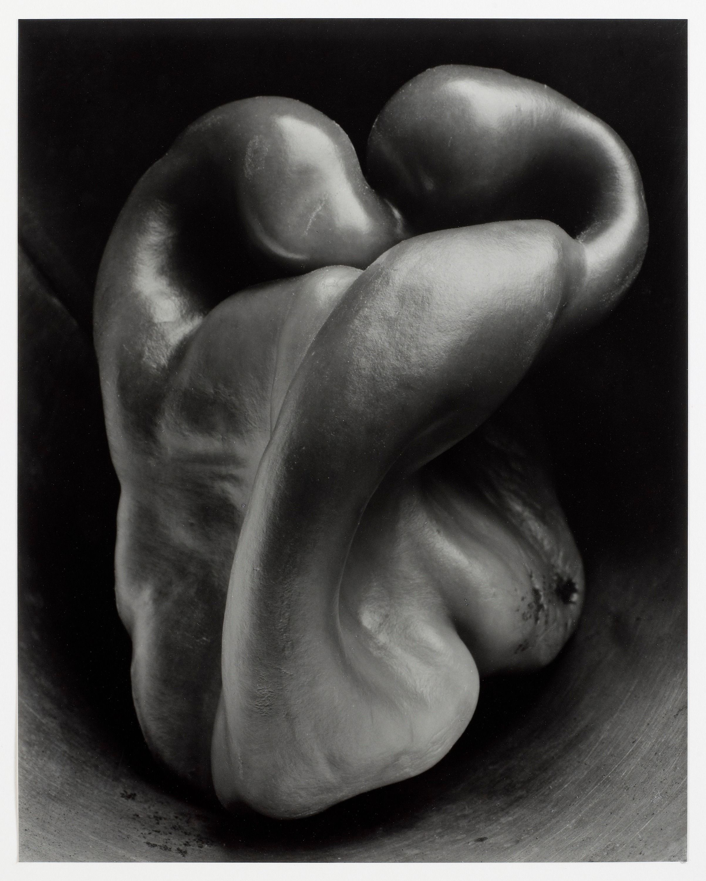 lost in translation bell peppers edward weston lost in translation bell peppers