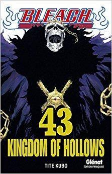 Télécharger Bleach Vol.43 Gratuit | Manga covers, Bleach ...