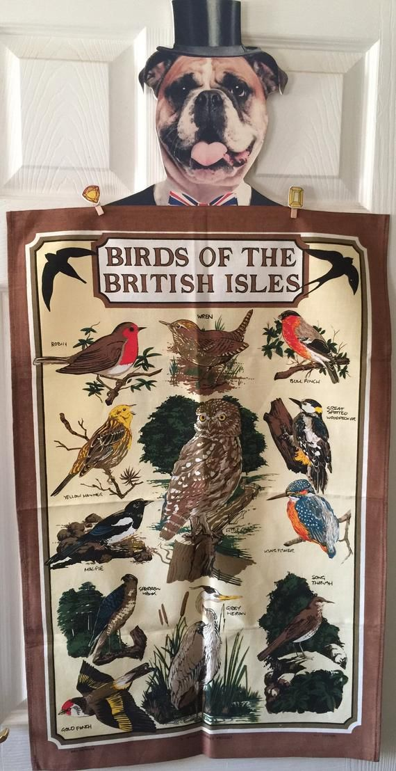 Vintage Unused 'Birds Of The British Isles' Design Cotton Tea Towel - Collectable- Wall Hanging - Bird Spotter/Lover Gift  - STUNNING #britishisles