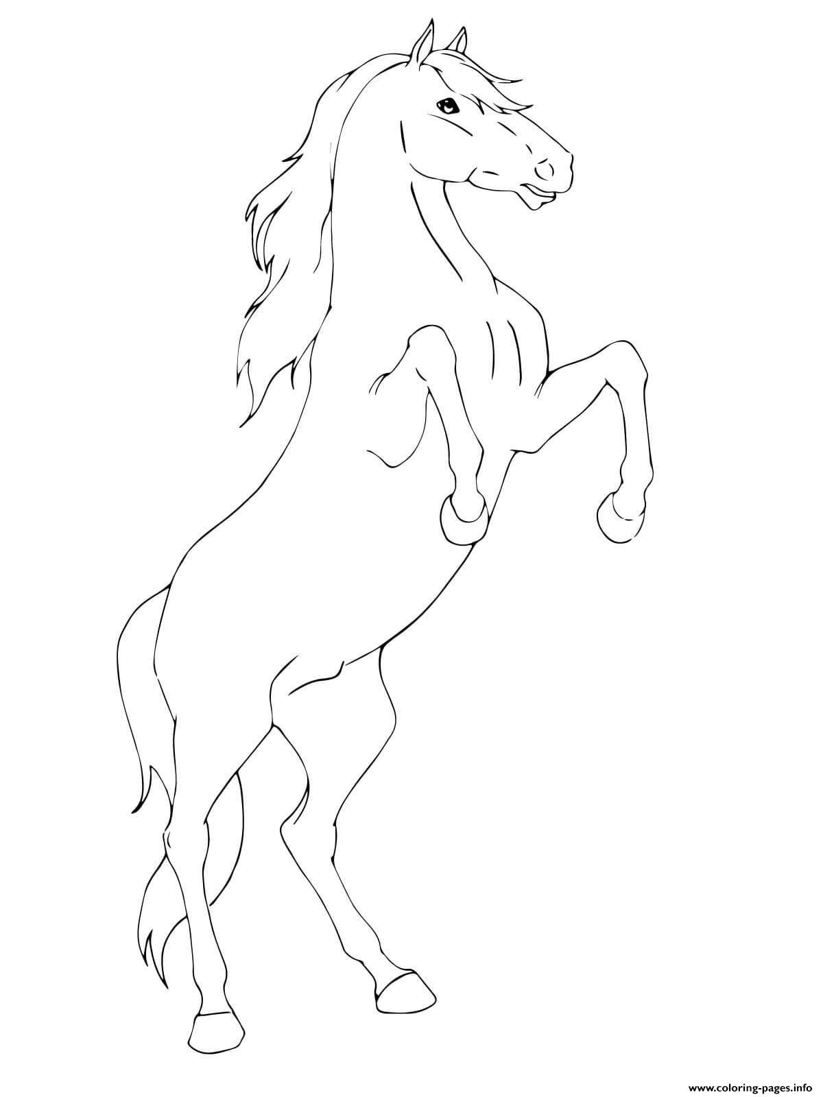 Printable Horse Coloring Page Youngandtae Com Horse Coloring Pages Horse Coloring Animal Coloring Pages [ 1600 x 1200 Pixel ]