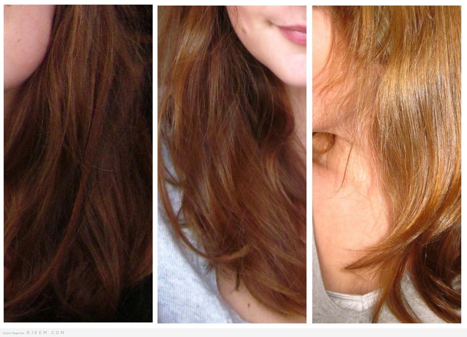 وصفة الكركم والبابونج لصبغ الشعر باللون البني العسلي Hair Styles Hair Long Hair Styles