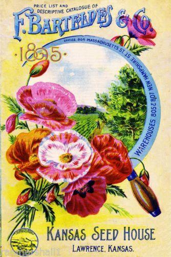 1898 Barnard Popular Vintage Flowers Seed Packet Catalogue Advertisement Poster