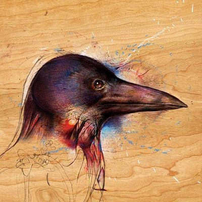 Color Pencil On Wood Art Artwork Black Bird