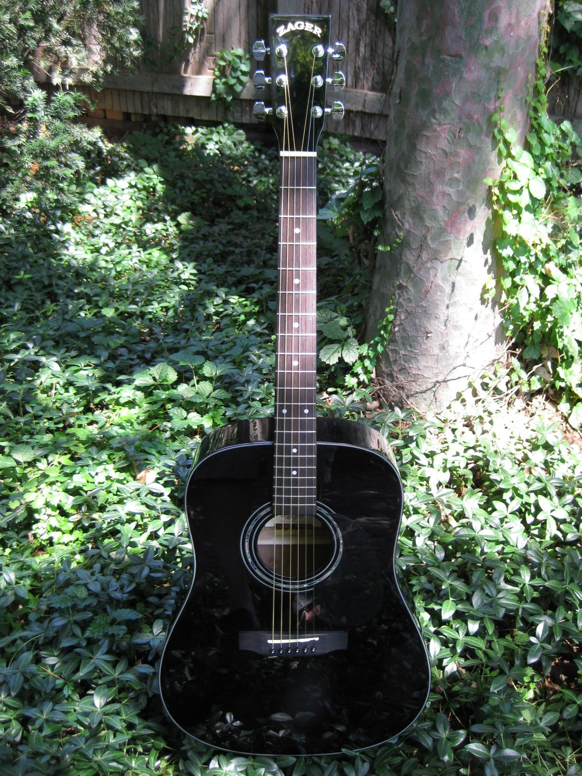 Zad20 Black Black Acoustic Guitar Guitar Guitar Reviews