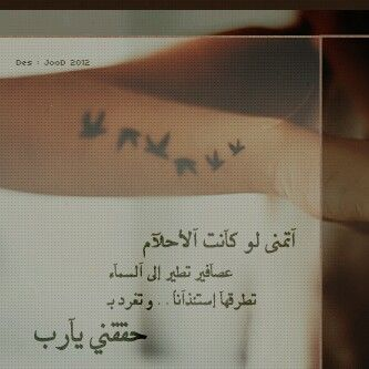 اتمنى لو تكون الاحلام مثل عصافير اقتباسات Words Tattoo Quotes Quotes