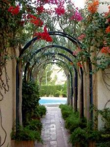 17 Best 1000 images about Archway on Pinterest Gardens Wisteria and
