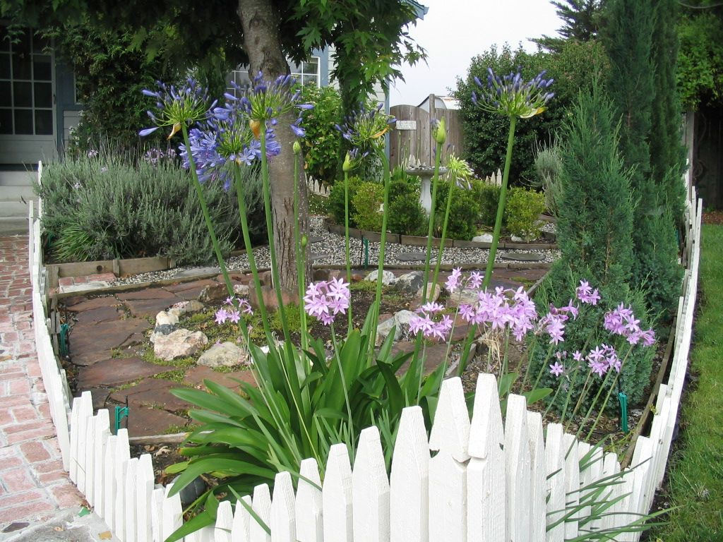 freshly installed hand-hewn picket fence