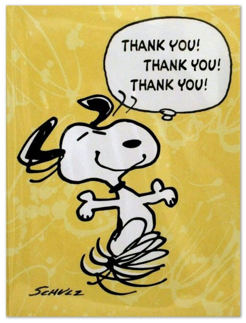 Thank you oulike bdskpies pinterest snoopy charlie brown thank you charlie brown peanutspeanuts snoopycharlie brown dancebirthday cardsbirthday bookmarktalkfo Gallery