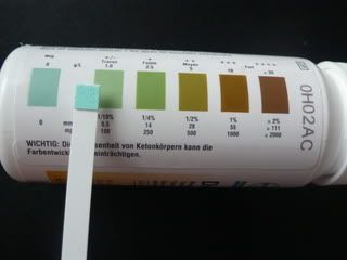 Image result for diastix color chart (With images