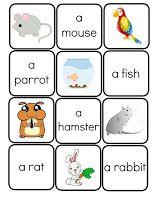 Pets Flashcards Vocabulary Words English Kids
