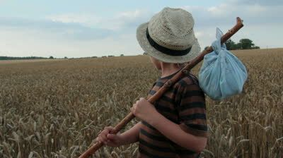 A young boy wanders through a corn field with all he owns wrapped in an old bandana hanging on a stick. Is he a modern Tom Sawyer or Huckleberry Finn? He thinks about where next then moves on. - HD stock video clip
