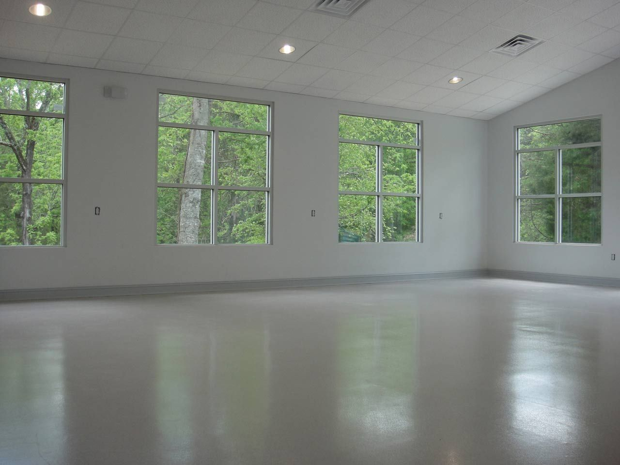 Huge Nice Big Training Room With Images House Training Dogs