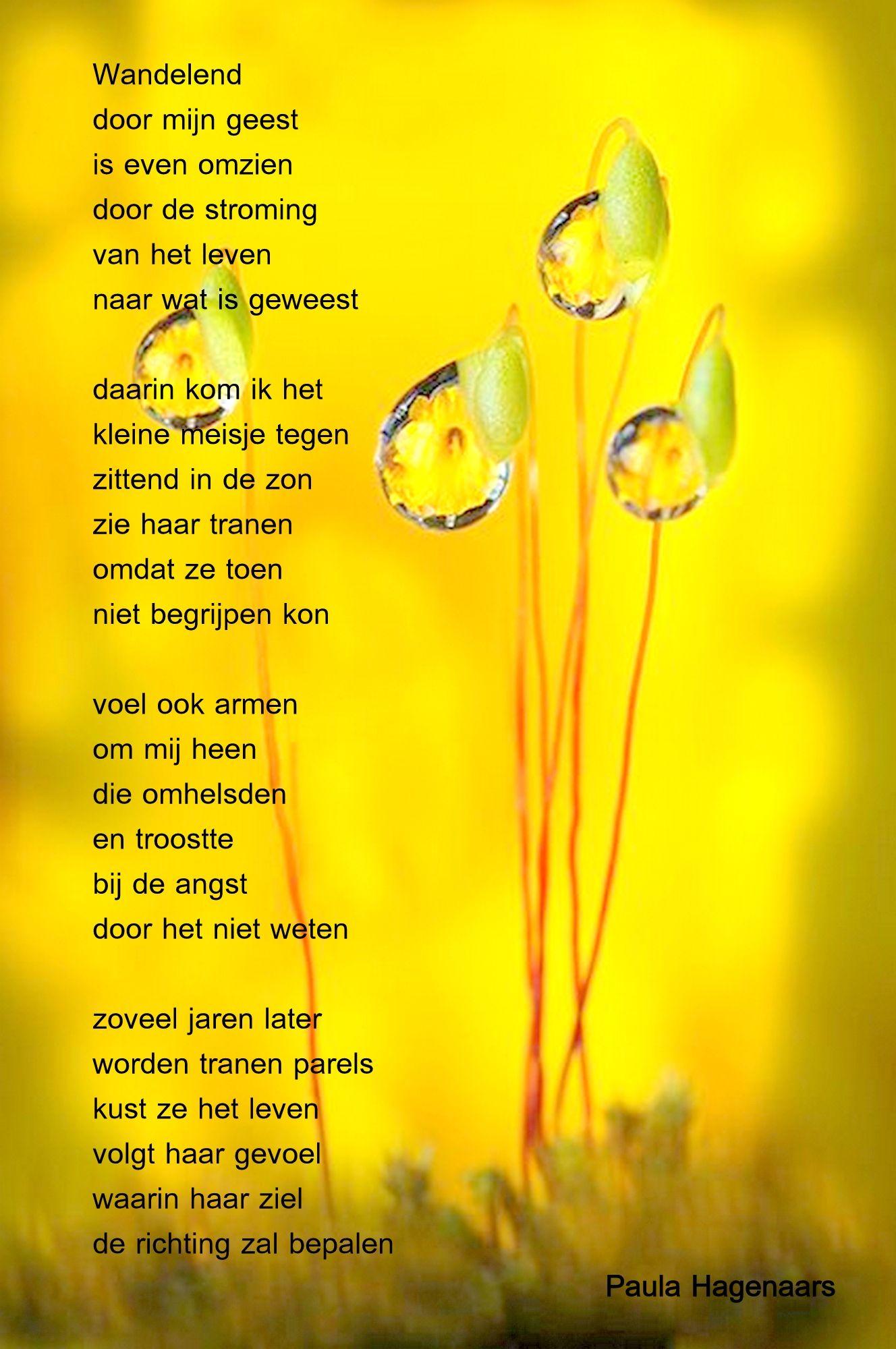 Gedichten Paula Hagenaars Gedichten Mooie Gedichten En