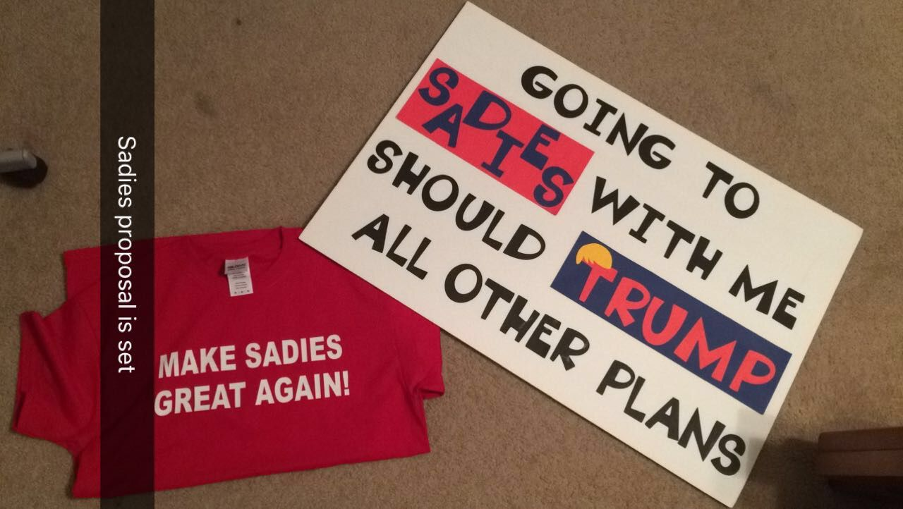 Sadies proposal
