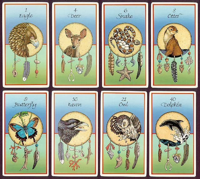Medicine Cards By David Carson A Beautiful Method Of Divination Based On Native American Animal Totems Spi Medicine Cards Animal Medicine Cards Animal Tarot