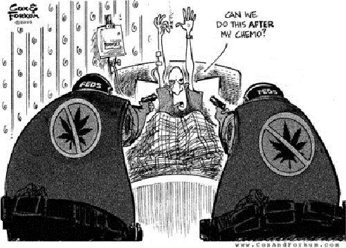 From  Arizona Medical Marijuana Blog