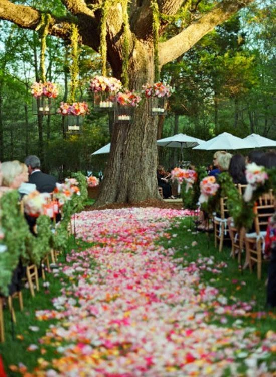 Petal pathways really turn your wedding into a fairytale. Read The Confetti Blog for tips on how to achieve this look...