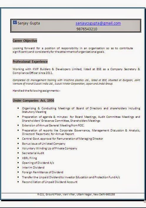example professional resume Sample Template Example ofExcellent - resume cv format
