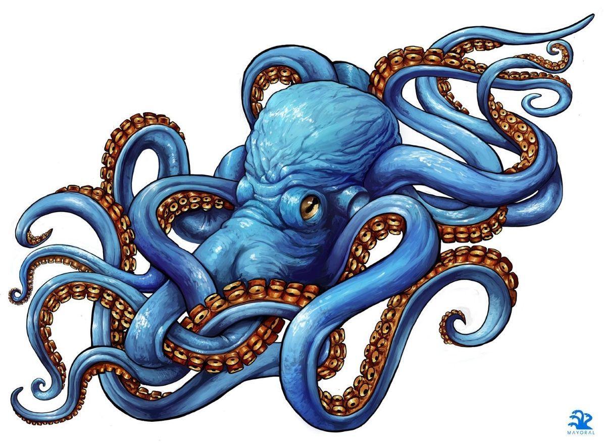 Осьминоги – тату эскизы • Идеи татуировок с осьминогами и ...