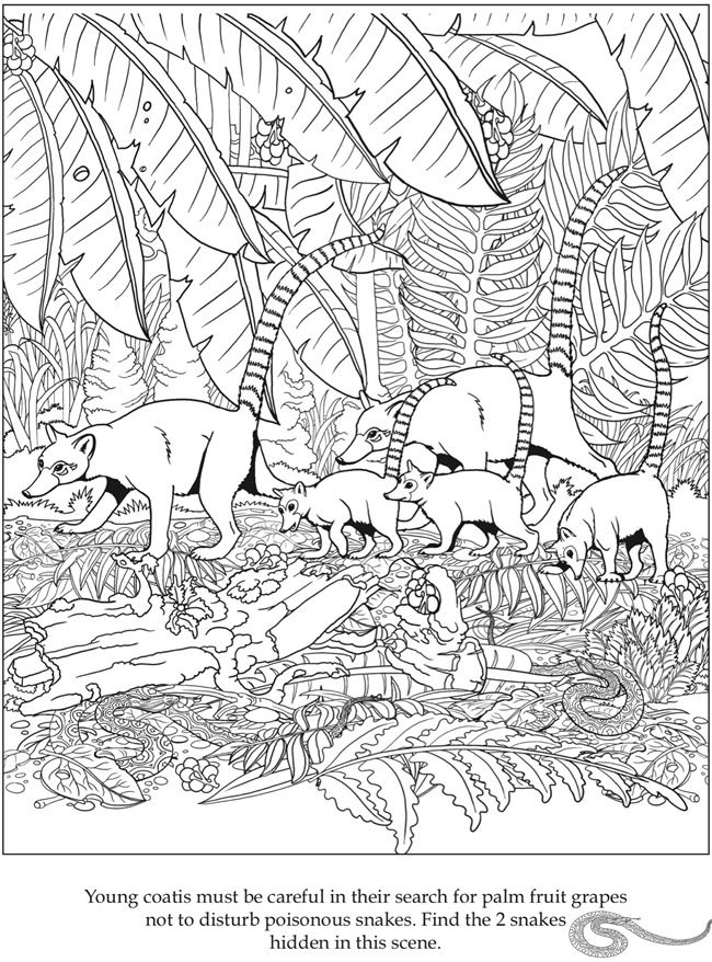 Pin By Brit Darington On Coloring Pictures And Stuff Coloring Pages Hidden Pictures Hidden Picture Puzzles
